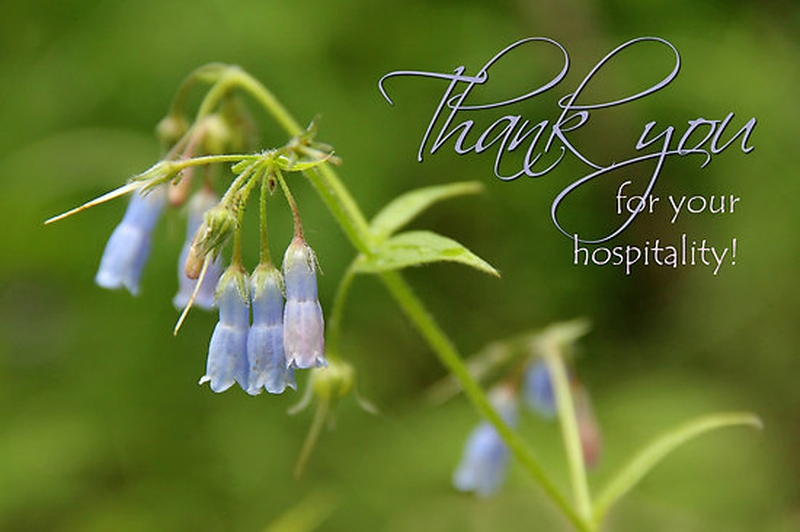 How to Write Thank You for Your Hospitality Note - EnkiVeryWell