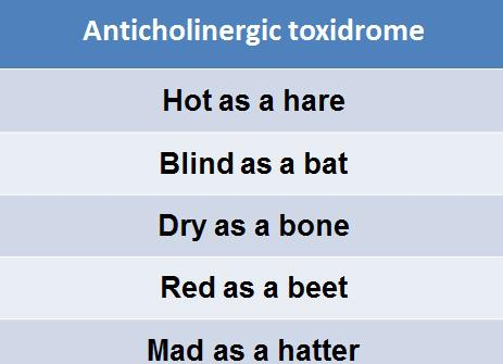 6 things to know about anticholinergic drugs - enkiverywell, Skeleton